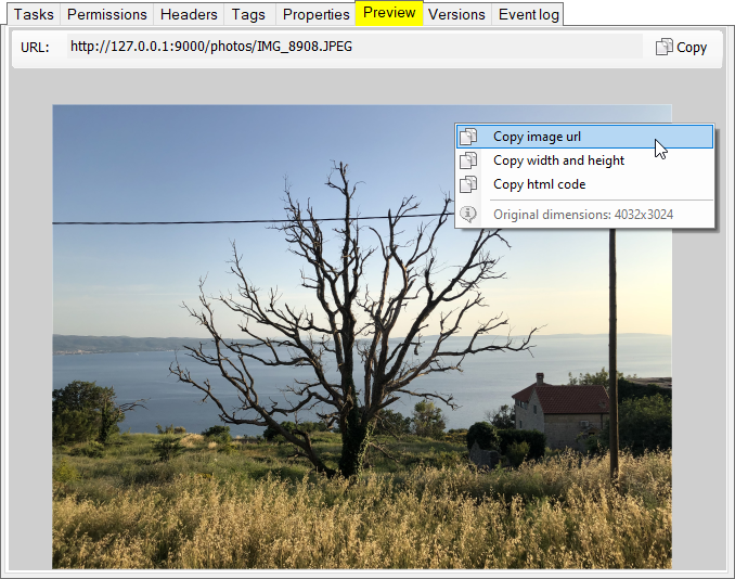 S3 Browser Preview feature. Image viewer with auto-resize
